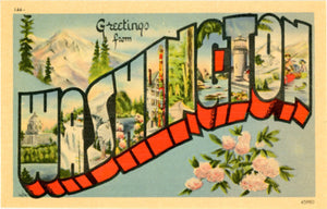 Washington Large Letter Vintage Postcard (unused) - Vintage Postcard Boutique