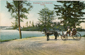 Washington Park Boulevard Horse & Buggy Seattle Washington Vintage Postcard 1909 - Vintage Postcard Boutique