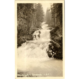 Washington River Torrents RPPC Vintage Postcard (unused) - Vintage Postcard Boutique