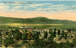 Williams Arizona Bird's Eye View Vintage Postcard (unused) circa 1910 - Vintage Postcard Boutique