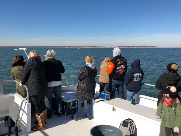 Https://jerseyshorewhalewatchingtour.com