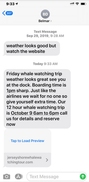 sms whale watching text messages