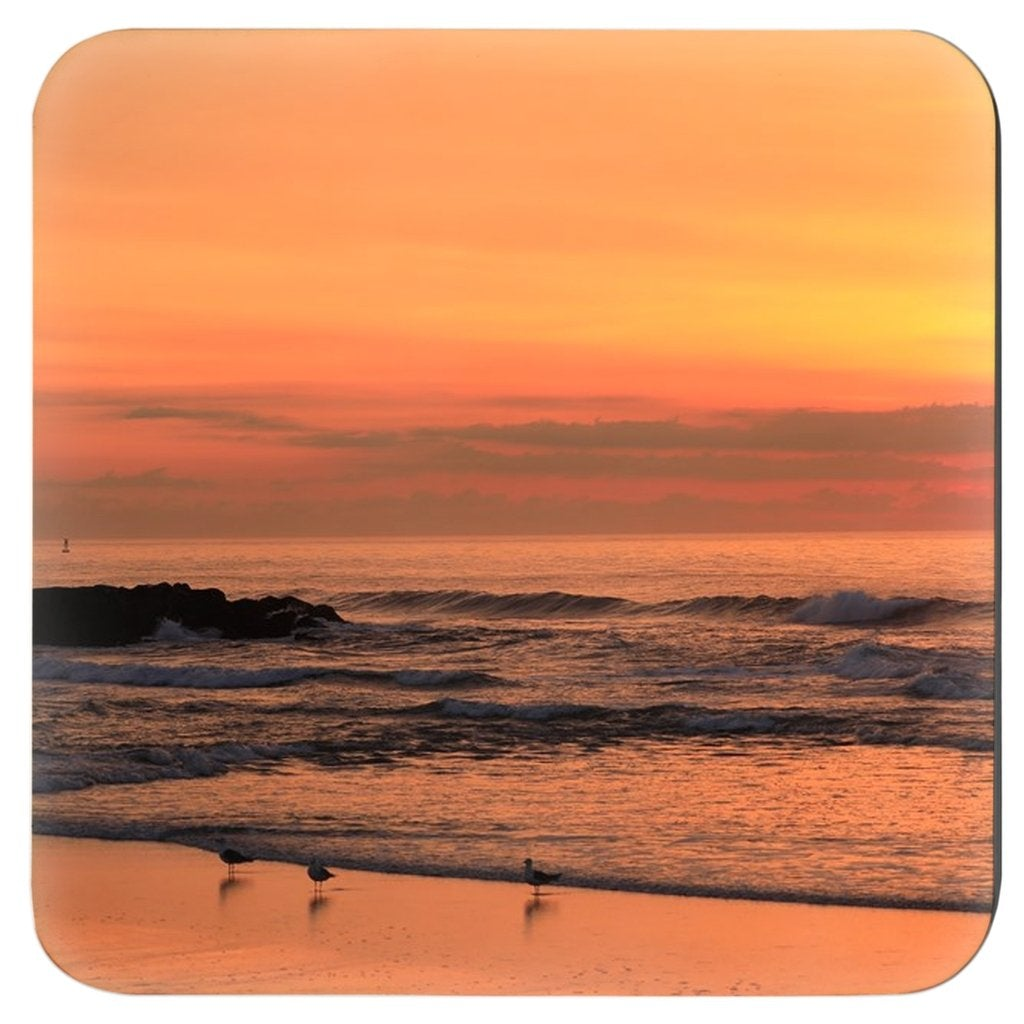 Coasters - Bill McKim Photography -Jersey Shore whale watch tours