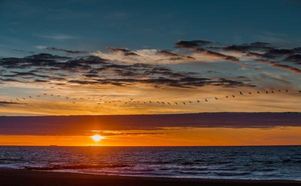 Homeward Bound Sunrise Jersey Shore - Bill McKim Photography -Jersey Shore whale watch tours