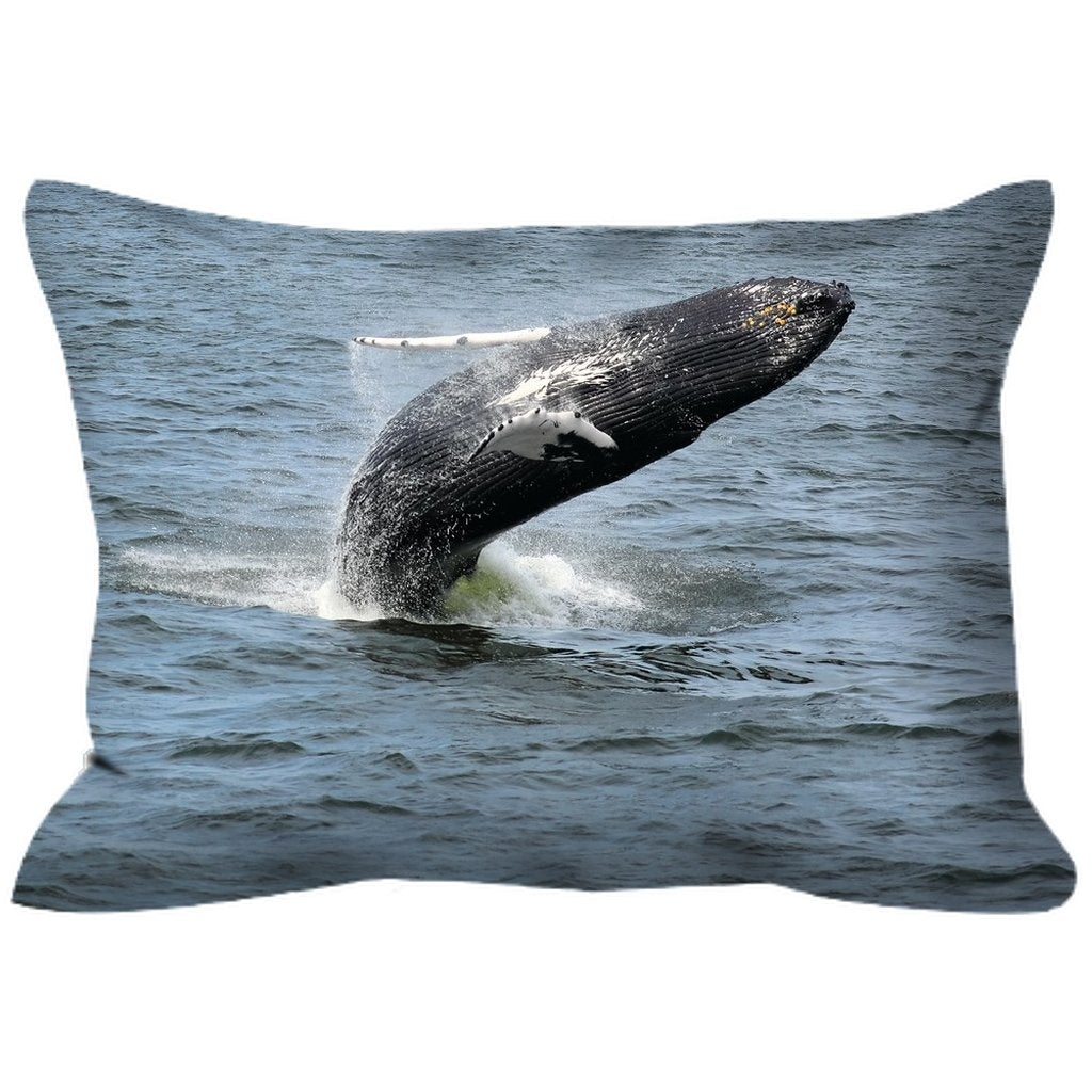 Outdoor Pillows Jersey shore whale watch Double sided - Bill McKim Photography -Jersey Shore whale watch tours