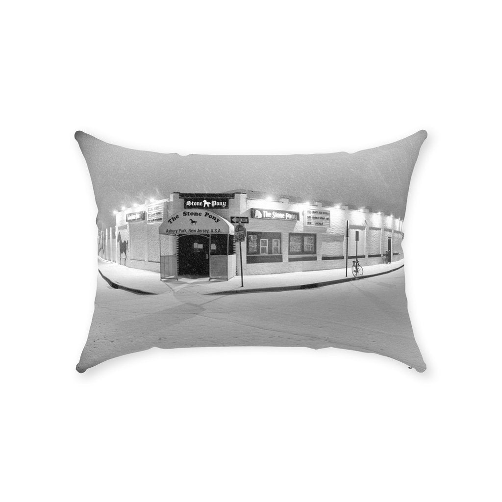 Throw Pillows Snow Pony Asbury Park NJ - Bill McKim Photography -Jersey Shore whale watch tours