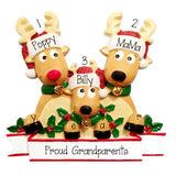 Reindeer Proud New Grandparents~ Personalized Christmas Ornament