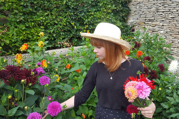 Sarah cutting Dahlia flowers