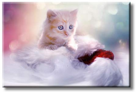 Cute Kitten Picture on Stretched Canvas, Wall Art Décor, Ready to Hang