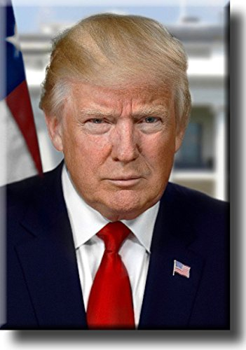 President Donald Trump Portrait Picture on Stretched Canvas Wall Art Décor, Ready to Hang!