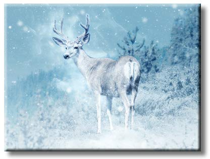 Reindeer Picture on Stretched Canvas, Wall Art Décor, Ready to Hang