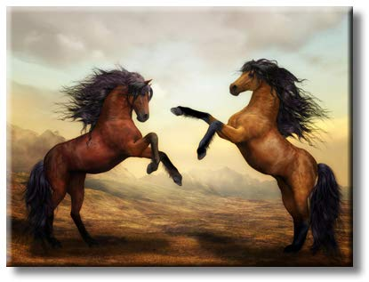 Fighting Horses Picture on Stretched Canvas, Wall Art Decor, Ready to Hang