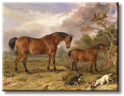 Horses with Dogs Picture on Stretched Canvas, Wall Art Décor, Ready to Hang
