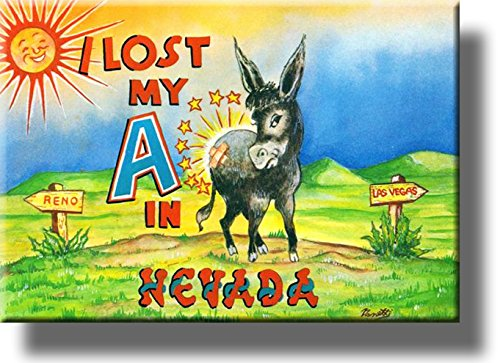 I Lost My A in Nevada, Donkey Comic Picture on Stretched Canvas, Wall Art Decor, Ready to Hang!