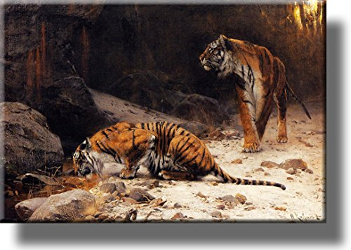 Tigers at Drinking Pool Picture on Stretched Canvas, Wall Art Décor, Ready to Hang!