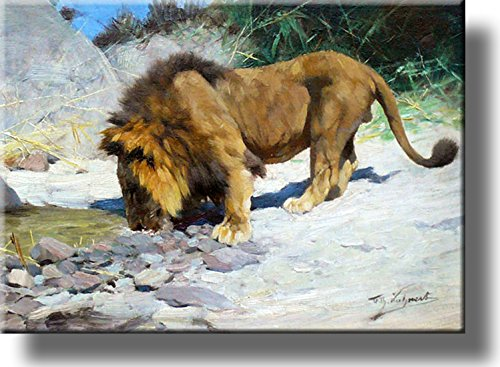 Lion Drinking Water Painting Picture on Stretched Canvas, Wall Art Décor, Ready to Hang!