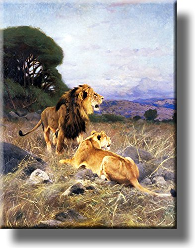 Lion and Lioness Picture on Stretched Canvas, Wall Art Décor, Ready to Hang!