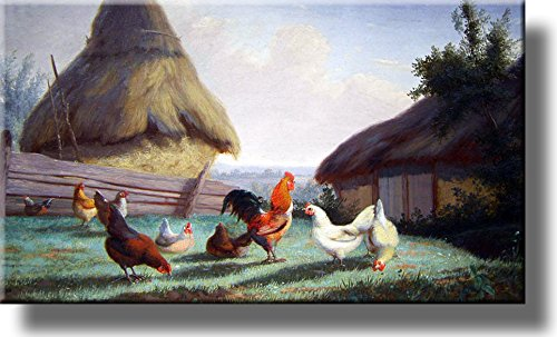 Chicken on a Farmyard Picture on Acrylic , Wall Art Décor, Ready to Hang!