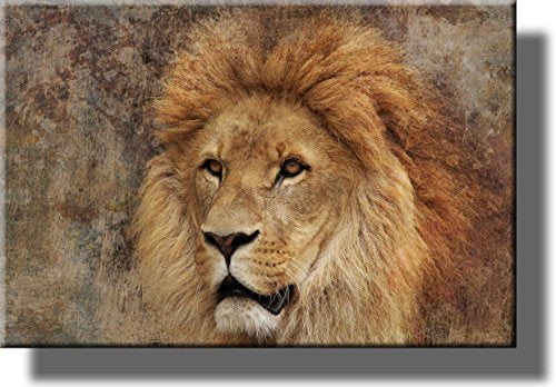 Lion Picture on Stretched Canvas, Wall Art Décor, Ready to Hang!