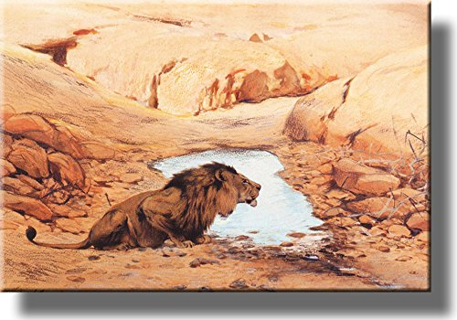 Lion by the Pond Picture on Stretched Canvas, Wall Art Décor, Ready to Hang!