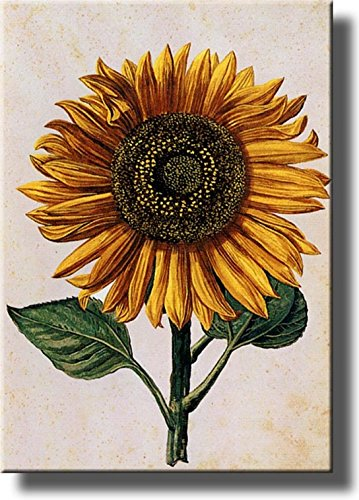 Sunflower Picture on Stretched Canvas Wall Art Décor Framed Ready to Hang!