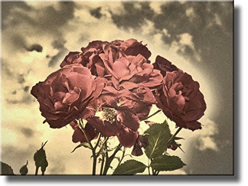 A Picture of Roses and Sky on Stretched Canvas, Wall Art Decor Ready to Hang!.