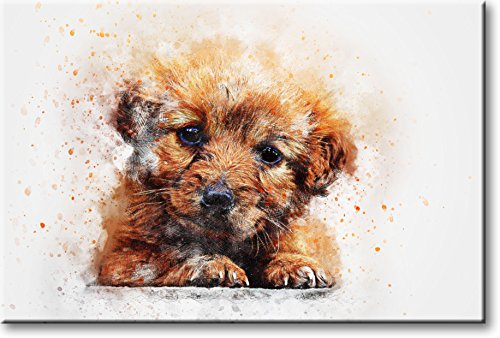 Cute Puppy Dog Picture on Stretched Canvas, Wall Art Décor, Ready to Hang