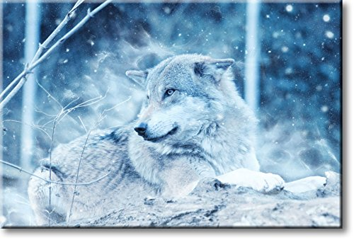 Wolf in Forest Winter Picture on Stretched Canvas, Wall Art Décor, Ready to Hang