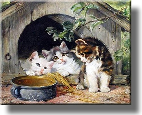 Three Kittens Cute Picture on Stretched Canvas, Wall Art Décor, Ready to Hang!