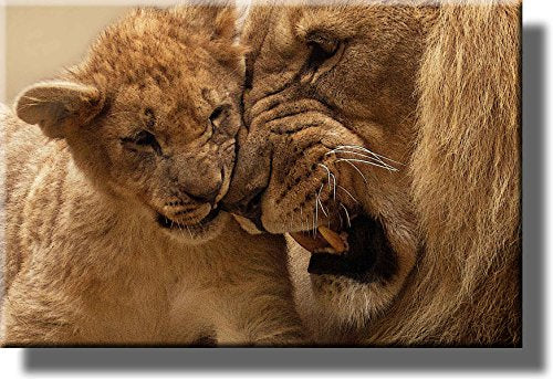 Head to Head Lion and Cub Picture on Stretched Canvas, Wall Art Decor, Ready to Hang!