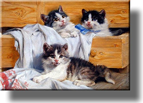 Playful Kittens Picture on Stretched Canvas, Wall Art Décor, Ready to Hang!