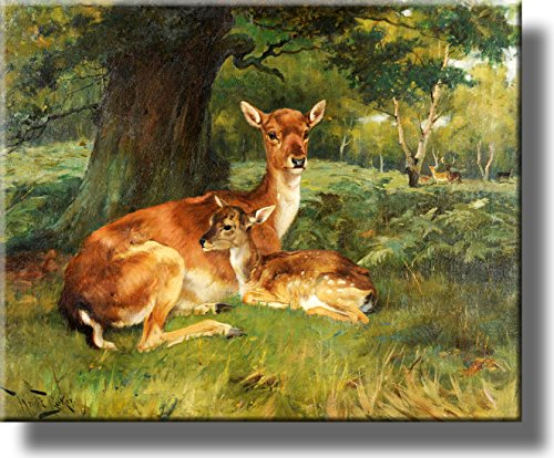 Fallow Deer Beside a Tree Picture on Stretched Canvas, Wall Art Décor, Ready to Hang!