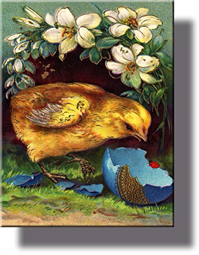 Easter Chick Hatched Egg Picture on Stretched Canvas, Wall Art Décor, Ready to Hang!