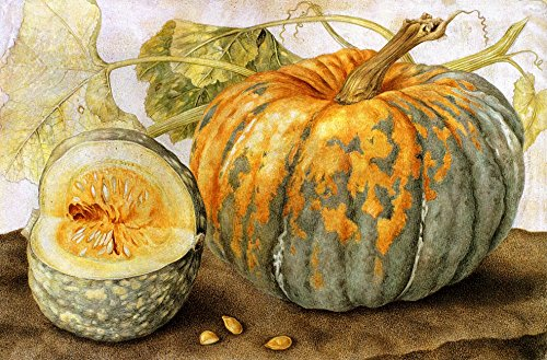 Squash Hand Painted by Giovanna Garzon, 1600's Picture on Stretched Canvas, Wall Art Decor Ready to Hang!.