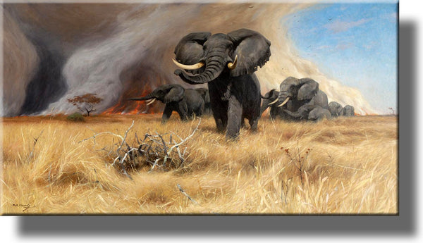 African Elephants Running from Fire Picture by Kuhnert on Stretched Canvas, Wall Art Decor, Ready to Hang!