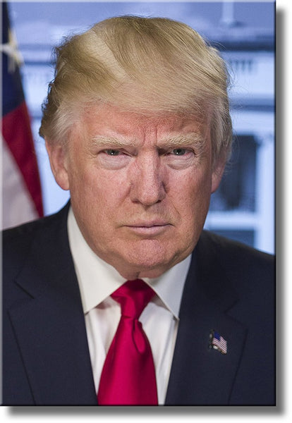 45th President Donald Trump Portrait on Stretched Canvas Wall Art Décor, Ready to Hang!