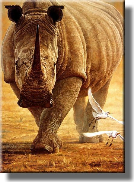 Rhino Wildlife Safari Picture on Stretched Canvas, Wall Art Decor, Ready to Hang!
