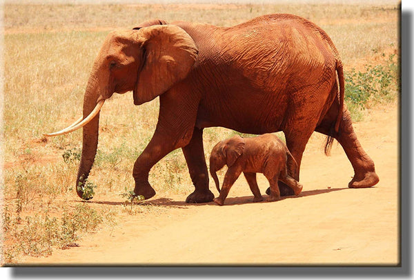 Mother and Baby Elephant Crossing Picture on Stretched Canvas, Wall Art Décor, Ready to Hang!