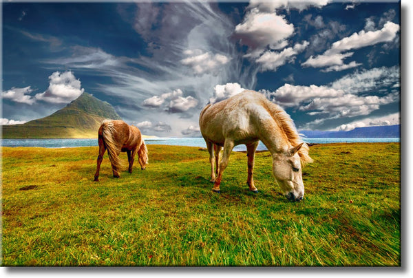 Horses on Field, Nature Landscape Picture on Stretched Canvas, Wall Art Décor, Ready to Hang