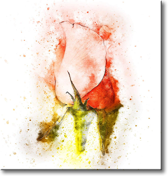 Rose Bulb Picture on Stretched Canvas, Wall Art Decor, Ready to Hang