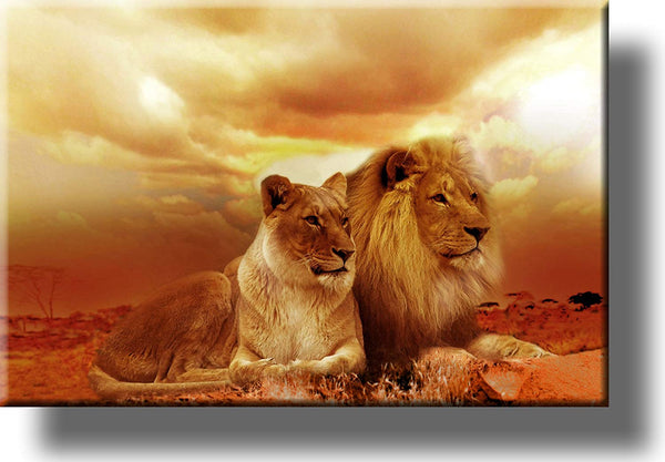 Lion and Lioness Picture on Stretched Canvas Wall Art Décor, Ready to Hang!