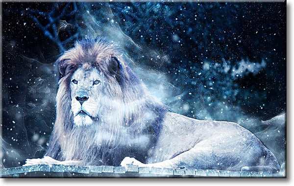 Lion in Winter Night Picture on Stretched Canvas, Wall Art Décor, Ready to Hang
