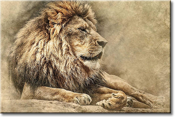 Vintage Lion Picture on Stretched Canvas, Wall Art Décor, Ready to Hang