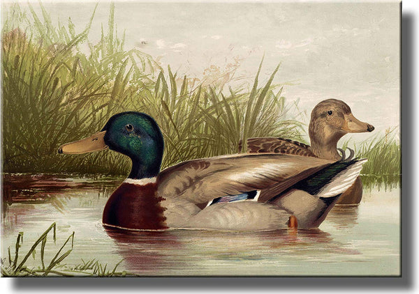 Ducks Vintage Picture Made on Stretched Canvas Wall Art Decor Ready to Hang!.