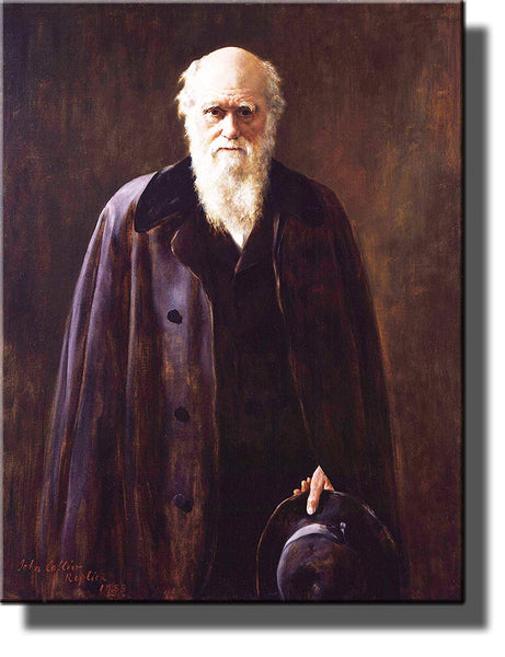 Charles Darwin Portrait Picture on Stretched Canvas, Wall Art Decor Ready to Hang!.