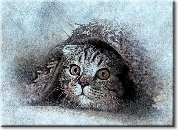 Cat Under the Rug Picture on Stretched Canvas, Wall Art Décor, Ready to Hang