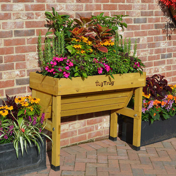 VegTrug Wall Hugger Raised Garden Bed  - Small