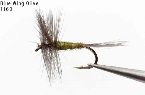 Blue Wing Olive Dry Fly - Old Trail Tackle & Sports