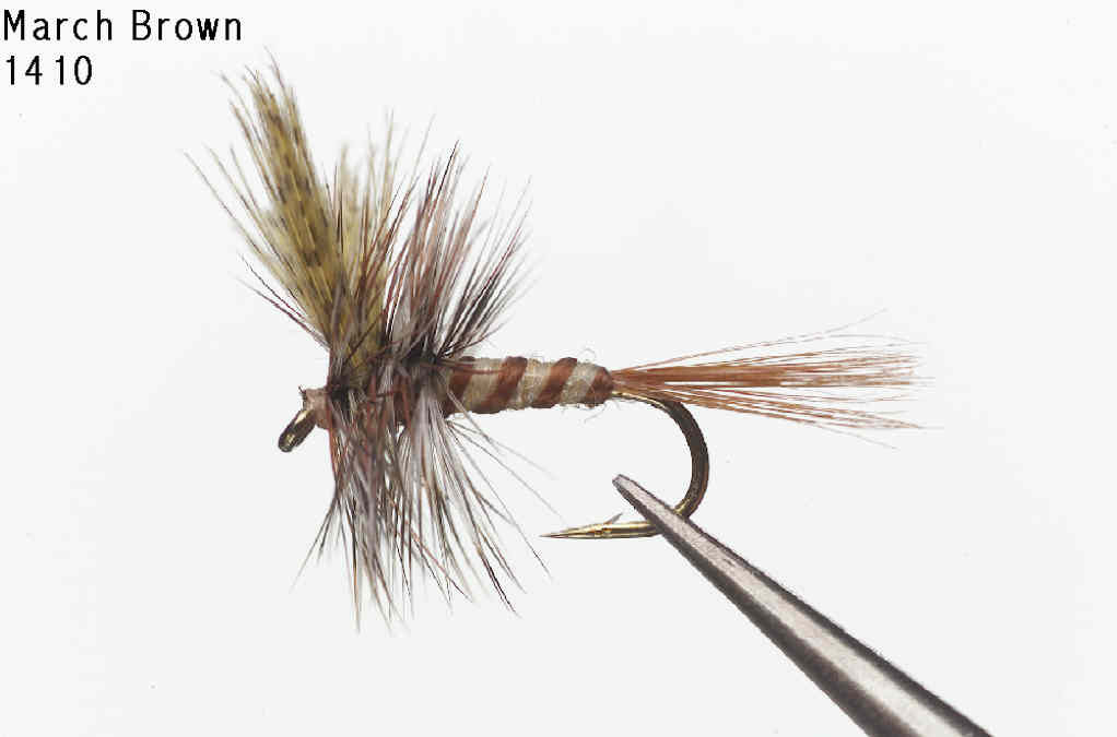March Brown Dry Fly - Old Trail Tackle & Sports