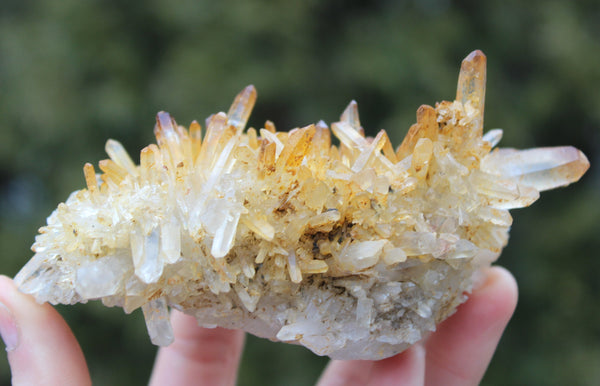 Iron Coated Quartz Cluster-GratefulGemHead
